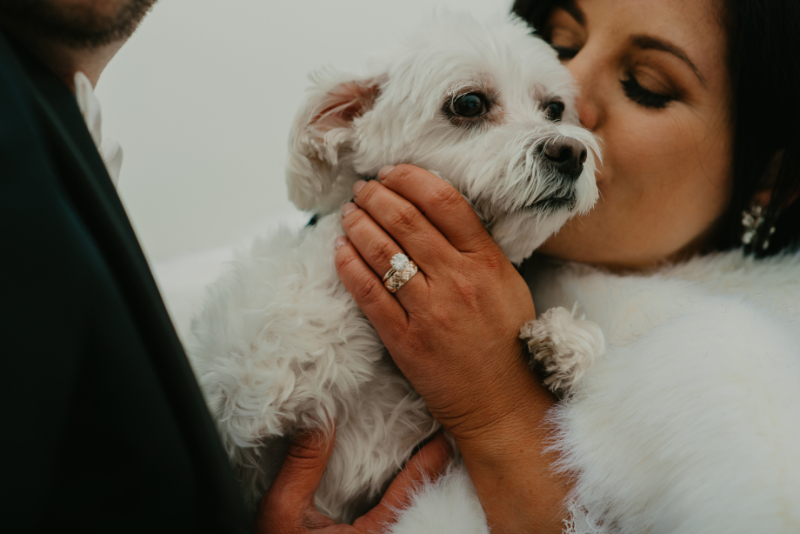 bride and groom kissing their dog